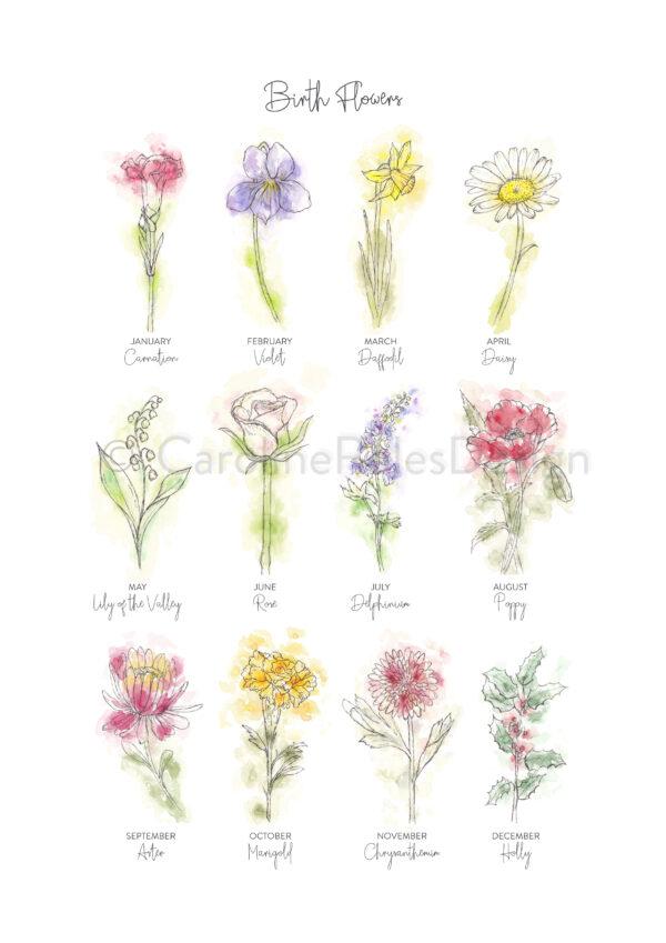 BIRTH FLOWERS ART PRINT